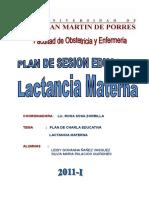 109447237-Plan-de-Charla-de-Lactancia-Materna.doc