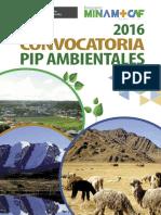 Bases Convocatoria Pip20161