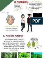 Nutricion Alum