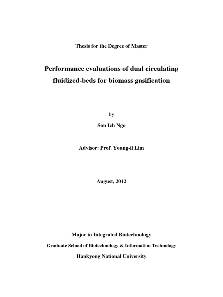 gasification fluent thesis