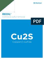 Corrosive Sulfur 210x297 En