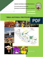 Informe Tecnico Areas Naturales Protegidas