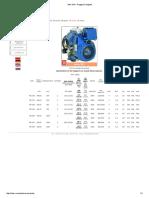 MOTOR MD351 RUGGERINI - AGRALE 4240.pdf