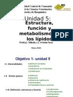 lípidos-obj 1-final modificado 150610