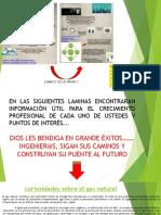Ejemplo Para La Presentacion de Seminario de Negociacion y Comercializacion Del Gas Natural