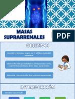 Msas_suprarrenales