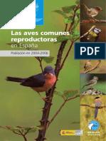 19 Aves Comune s