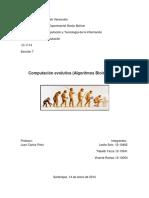 Computacion Evolutiva, Algoritmos Bioinspirado