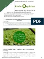 Como Plantar Alface Orgânica_ #01-Produção de Mudas - Universidade Organica