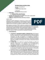 Informe Pericial Materia Penal Fin
