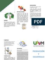 Produccion y Desarrollo