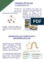 macromoleculas