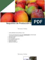 Requisitos Producción - Procesamiento Orgánico