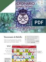 Sincro_MAGO_10.pdf
