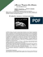 Guia Informativa 11
