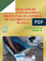 Desinfeccion Frejol Salvador