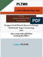 PLTMG