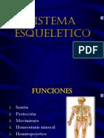 02. Sistema Esqueletico
