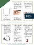 leafleat_demam berdarah dengue (dbd).pdf