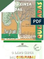 Folh - O Lado Cinza Das Queimadas (SEMA-AP 2000)