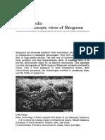 Appendix Microscopic Views of Shingosen 1994 Advanced Fiber Spinning Technology