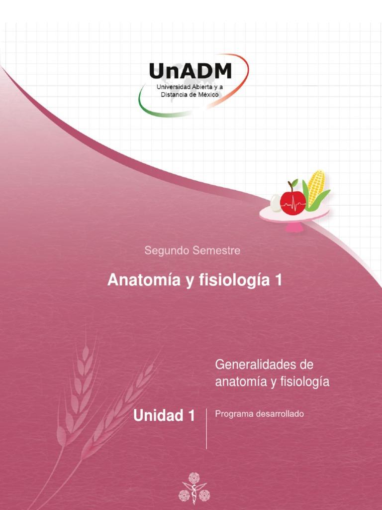 Asombroso Cómo Enseñar Anatomía Y Fisiología En La Universidad ...