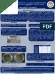 planta de romero sobre candidiasis oral
