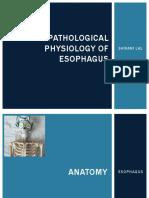 Pathophysiology of Esophagus