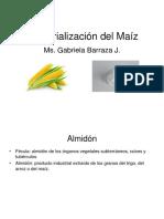 Clase Almidon de MAÍZ