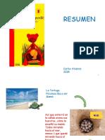 263441267-Tortuguita-Se-Perdio (1).pdf