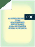 LECTURA 1-Diversificacion Curricular