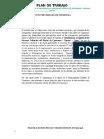 PLAN DE TRABAJO DE COPORAQUE.docx