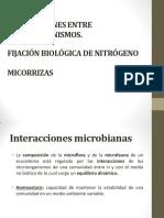 Clase 3 Interacciones Microbianas