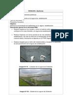 Estudios de Impacto Ambiental PTAR Juliaca