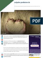 FireShot Screen Capture #014 - 'Estos son los 10 principales productos de agroexportación' - rpp_pe_economia_economia_estos-son-los-10-principales-pro.pdf