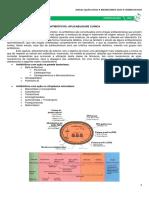 MedResumo 2016 -  FARMACOLOGIA - 09 - ANTIBIÓTICOS, ABORDAGEM APLICADA.pdf