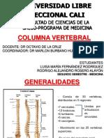 Column a Vertebral