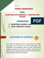 Exposicion - Auditoria Compras y Cta. x Pagra