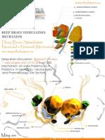Subthalamic Stimulation HFS Mechanism
