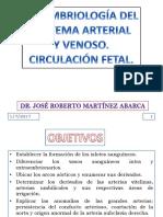 Desarrollo Del Sistema Arterial y Venoso Circulación Fetal