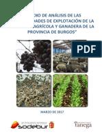 Estudio Nuevas Oportunidades Agrarias en Burgos