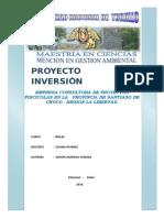 Proyecto Inversion(Inglés)