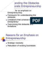Understanding the Obstacles to Corporate Entrepreneurship - Chapter 9_2