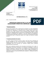 InformeEspecialPrincipalesAspectosLey_28518