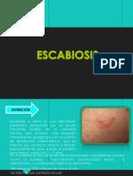 escabiosis-150617044903-lva1-app6891