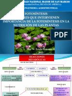 7ma Fotosintesis