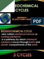 biogeochemicalcycle-161007092008