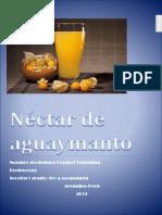 Néctar de Aguaymanto