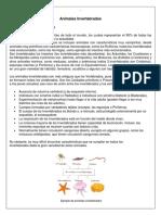 Animales Invertebrados (equinodermos y platelmintos)