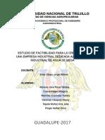 PROYECTO DE AGUA DE MESA.docx